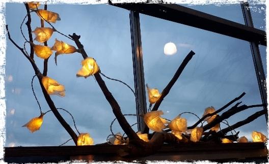 Guirlande lumineuse 2
